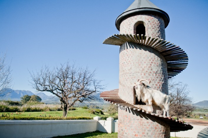 Cape Winelands Day tour