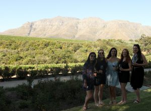 Rust En Vrede Wine Estate Stellenbosch Wine Tour